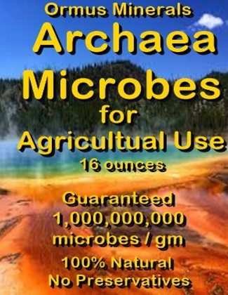 Archaea Minerals